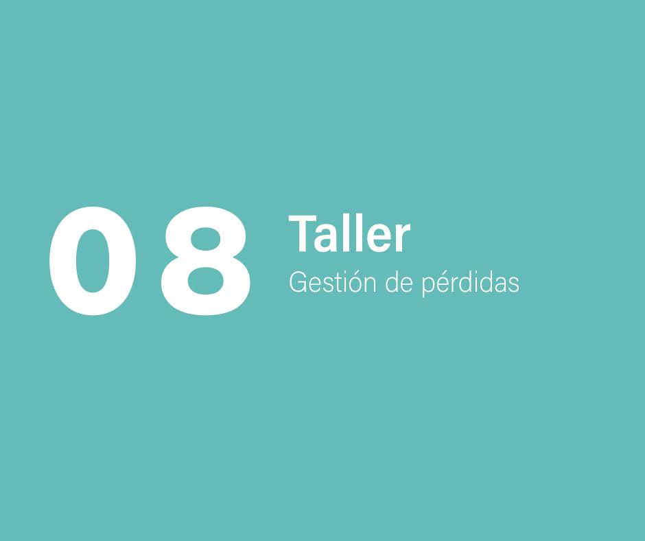 Taller 8: Gestión de pérdidas